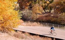 Bicyclist on Bosque Trail
